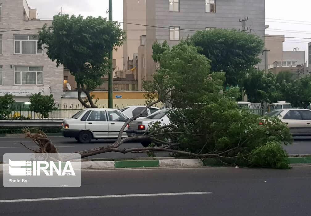 خبرنگاران هشدار شهرداری همدان نسبت به احتمال وقوع حادثه در تندباد