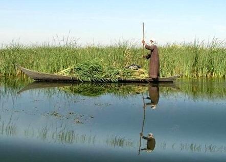 گام نخست حمایت از معیشت پایدار ماهیگیران تالاب شادگان اجرایی شد