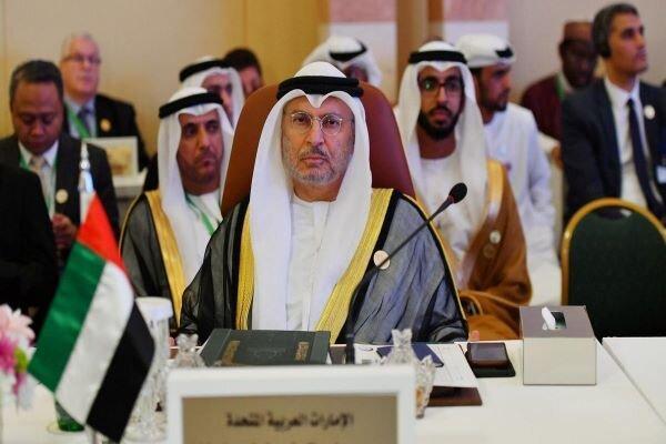 واکنش مشاور رئیس امارات به تماس تلفنی اردوغان و محمد بن زاید